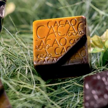Ricetta Cioccolatino | Pralina alla Birra con Cioccolato Ariba Master Martini